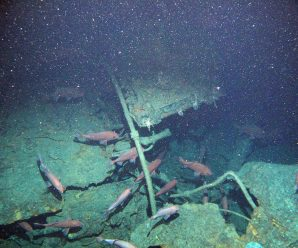 WWI Australia submarine wreck found off PNG