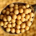 CBOT soybeans slide as China lowers import estimates