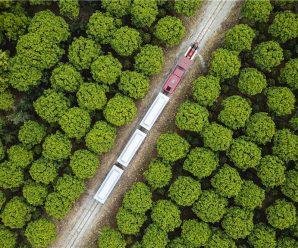 Zhejiang wins key ecological honor